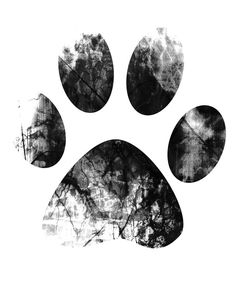 When your dog digs in the trash, you might want to charge him with a misdemeanor, haul him downtown and have him printed and booked, but there may be another reason you'd like his paw print.