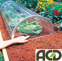 Longrow tunnels, voor 3 x zoveel kweekplezier Deze plastic mini-tunneltjes zijn de enige vervaardigd in 'vast' materiaal en dus vrij uitzonderlijk. Uw plantjes zijn toch in staat optimaal licht op te vangen.