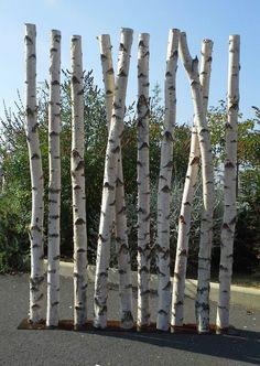 Paravent en troncs de bouleaux chez www.deco - nature.com