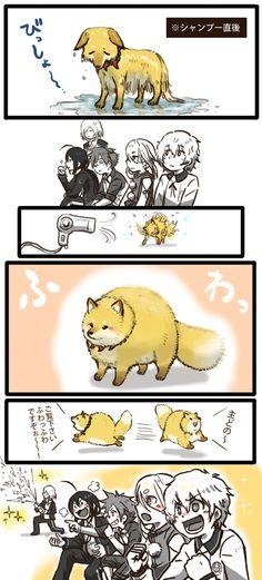 お供の狐「フワッフワですぞ!! フワッフワですぞ!! 」 鳴狐「 ゾックゾクするやろ」