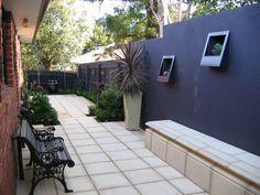 Garden Design with Courtyard Gardens : Gallery : The Contrary Garden with Grubs In Garden from thecontrarygarden.com.au