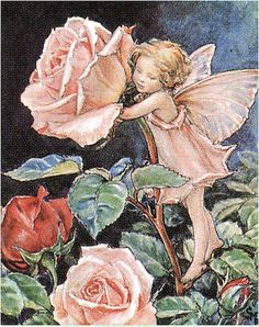 The Rose.  Like many girls I had a book with these illustrations of fairies, I could read about and gaze at them for ages, siiigghhhh