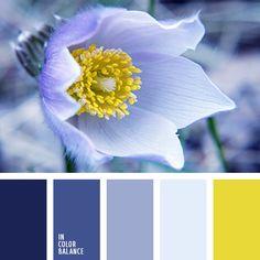 amarillo vivo, amarillo vivo y violeta, amarillo y azul oscuro, amarillo y violeta, azul oscuro y amarillo, azul oscuro y celeste, azul turquí, celeste y azul oscuro, color azul turquí, combinación de colores, elección del color, selección de colores, violeta y amarillo.