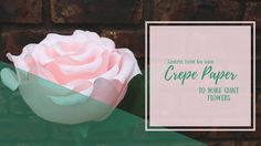 Learn to make these giant flowers from crepe paper! Everything you need is available at our online store! Giant Flowers, Crepe Paper, Crafty, Learning, Store, How To Make, Studying, Larger, Teaching