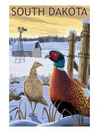 Iowa - Pheasants - Lantern Press ArtworkStretched Canvas Prints Printed in the USA! UV resistant ink, color safe, fade resistant Perfect for your home, office, or a gift Canvas Poster, Poster Prints, Art Prints, Poster Wall, Poster Poster, Framed Prints, Canvas Prints, Vintage Films, Stock Art