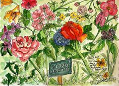 pen and ink and watercolor - Paris garden