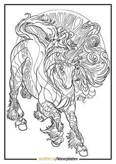Kleurplaat eenhoorn voor volwassenen Unicorn Coloring Pages, Adult Coloring Book Pages, Colouring Pics, Free Coloring Pages, Printable Coloring Pages, Coloring Sheets, Coloring Books, Colorful Drawings, Colorful Pictures