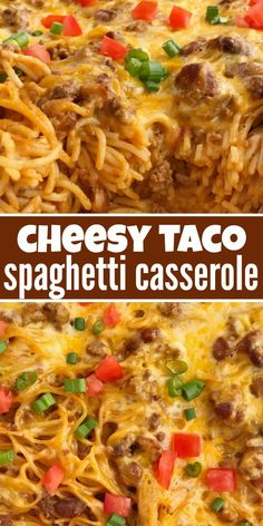 """Cheesy taco spaghetti casserole is the ultimate dinner comfort food. Cheesy pasta loaded with taco seasoned ground beef, chili beans, and tomato. Bakes in one pan, serves a crowd, and the leftovers are fabulous for Taco Spaghetti, Spaghetti Casserole, Spaghetti Recipes, Cheesy Spaghetti, Spaghetti Squash, Dinner Casserole Recipes, Casserole Dishes, Easy Dinner Recipes, Easy Meals"