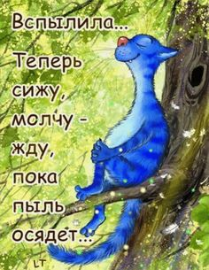 Дневник : LiveInternet - Российский Сервис ОнРFunny Phrases, Funny Quotes, Crazy Cat Lady, Crazy Cats, Animal Gato, Image Chat, Funny Expressions, Creation Photo, Gatos Cats
