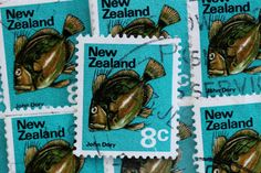 20 John Dory Fish Postage Stamps // New Zealand by PillarBoxStudio