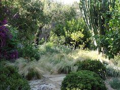 Con mínimos recursos, bajo mantenimiento y exuberante belleza, así es el jardín mediterráneo sostenible
