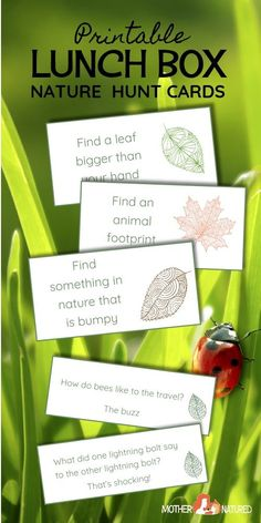 Nature Hunt Cards: Add some Curiosity to their Lunch Box! These lunch box Nature Hunt Cards will encourage your kids to be curious about the natural world around their school. Nature jokes included too! Creative Activities For Kids, Printable Activities For Kids, Outdoor Activities For Kids, Printable Crafts, Crafts For Kids, Forest School Activities, Nature Activities, Montessori Activities, Fun Activities