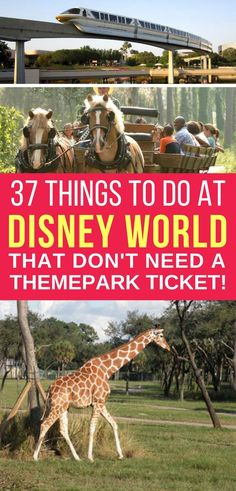 Ever wondered what to do at Disney World with no tickets? It isn't just about the theme parks, the magic extends to the Resort hotels too so why not spend some quiet time exploring and just enjoying time as a family.
