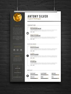 Pro Resume on Behance