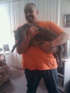 He's a big boy Big Boys, Cats, Gatos, Cat, Kitty, Kitty Cats