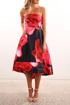Wilderness Dress Navy Red Print
