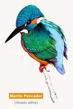 Martin pescador. Pintado con acuarelas, acrílico y pinturas de madera.