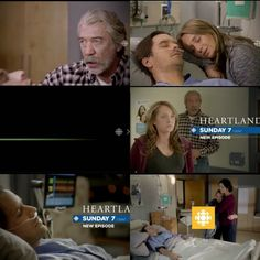 Heartland Quotes, Heartland Cast, Ty And Amy, Amber Marshall, Healing Heart, Best Shows Ever, Movie Quotes, Equestrian, Tv Series