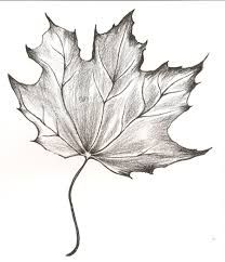 Image result for maple leaf tattoo