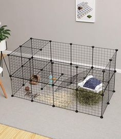 Easily build your own rabbit, hedgehog, or guinea pig cage with this NIC cube kit. Comes with wire storage cube panels, zip ties, and plastic connectors. Indoor Rabbit Run, Indoor Guinea Pig Cage, Rabbit Hutch Indoor, Diy Bunny Cage, Bunny Cages, Rabbit Cages, Rabbit Cage Diy, Rabbit Wire, Pet Rabbit