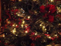 #christmastime #christmaslights #christmastree