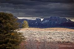 Golf In Southern Utah Kokapelli Golf Course 3 by Judson Joyce