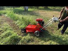 Lawn Mower, Agriculture, Outdoor Power Equipment, Lawn Edger, Grass Cutter, Garden Tools