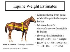 Measuring Horse Weight or Weight Calculator -- Very interesting! I'm going to try this and see what I get