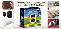 Exceptionally Small Electronic Pet Locator Tag Suitable for Cats and Dogs Dog Name Tags, Dog Tags Pet, Pet Dogs, Dog Cat, Doggies, Dog Harness, Dog Leash, Pet Finder, Activity Monitor