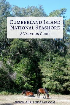 tybee island gay personals Gay savannah guide,  if you have some time, drive the 18 miles to tybee island, a get-away that draws gays and lesbians from throughout georgia and the southeast.