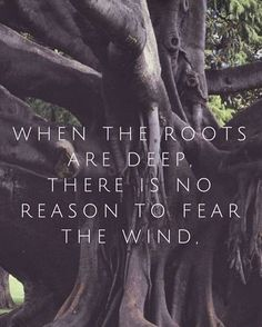 How do you deepen your roots?