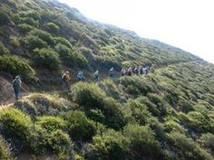 Beginning this weekend, for the first time since the trail began to be stitched together out of old ranches and public land nearly 50 years ago, the Backbone Trail, a 67-mile hiking route that winds through Malibu's backyard will be one continuous path.