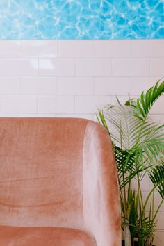 Velvet, Tiles & Plants Photos by: www.kirstymclachlan.com Salons, Tiles, Velvet, Plants, Photos, Home, Room Tiles, Lounges, Pictures
