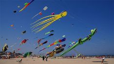 Fly a Kite at the Cervia International Kite Festival