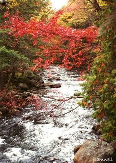 rolling river, adirondack mountains #adirondack #adirondacks