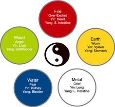 5 Elements, Yin and Yang Organs, Emotions >> Big Tree School of Natural Healing Holistic Healing, Natural Healing, Ayurveda, Chakras, Meridian Massage, Shiatsu, Health Heal, Traditional Chinese Medicine, Qigong