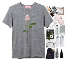 """""""boy meets girl, boy really likes her"""" by california-love-and-life ❤ liked on Polyvore featuring Abercrombie & Fitch, KRISVANASSCHE, adidas, philosophy, Case Scenario, Monsoon, Bobbi Brown Cosmetics, Givenchy and AMBRE"""