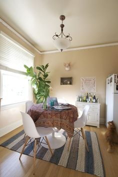 Heather's Sunny San Francisco Space Apartment Therapy