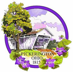 A recent financial audit of the city of Pickerington conducted by Auditor of State Dave Yost's office has not only returned a clean audit report, but placed the city in elite company in terms of financial-reporting prowess.