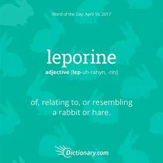 leporine