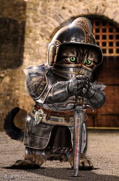 Kitty The Knight - Worth1000 Contests