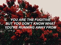 old yellow bricks // arctic monkeys @natofwonderland