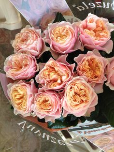 These are gorgeous roses called Vuvuzela! Sold in bunches of 20 stems from the Flowermonger the wholesale floral home delivery service.