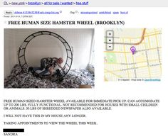 Going Nowhere Fast: A Human-Sized Hamster Wheel