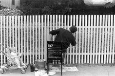 Spring in Berkley.  1961 Dorothea Lange.