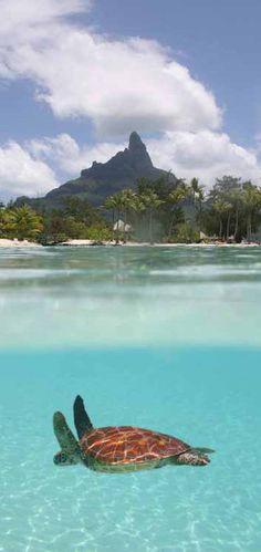 #Le_Meridien_Bora_Bora Hotel #Bora_Bora #French_Polynesia