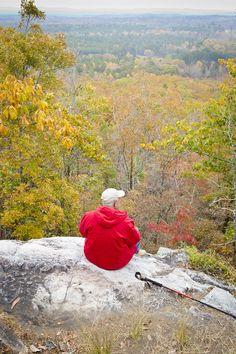 Leaf Watch Website Tracks Best Fall Color in Georgia
