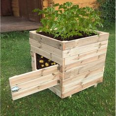 Kostuch Square Potato Planter Box. The solid wooden structure can hold ample amounts of soil, and still being compact enough to fit in any garden space to make it easy for you to harvest potatoes and other root crops, such as carrots, beets and parsnips. Add doors on each side for better access. #containergardeningvegetables