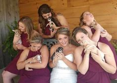 Bride Uses Adoptable Rescue Puppies As Bouquets At Her Wedding - The Dodo Animal Shelter, Animal Rescue, Wedding Bride, Wedding Day, Rescue Puppies, Dog Safety, Little Puppies, Trendy Wedding, Bouquets