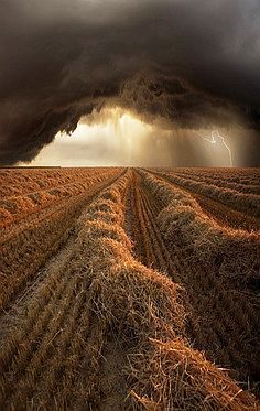 When Hell Breaks Loose ... summer storm at harvest time in Strohgau / Baden-Wuerttemberg, Germany